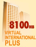 Virtual International Plus