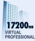 Virtual Professional